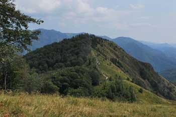 Neposredna soseda Kamniškega vrha je razgledna Planjava.