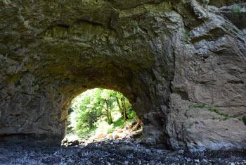 Po Velikim naravnim mostom v Rakovem Škocjanu teče reka Rak, ki ponikne v sosednji Tkalci jami.