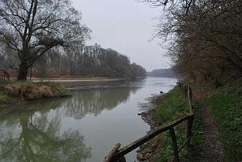 Razkriški kot je poleg Bukovniškega jezera naslednji zdravilni gaj poln izvirov pozitivnih zemeljskih energij, ob njem pa se nahaja reka Mura.