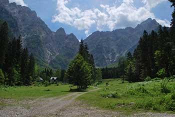 Robanov kot je dolina nad katero se dvigajo Molička peč, Velika Zelenica, Ojstrica in Krofička.