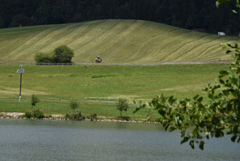 Škalsko jezero je eno izmed treh umetnih velenjskih jezer.