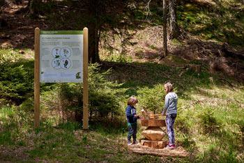 Škratova učna pot na Rogli je narejena za najmlajše raziskovalce, otroke, ki radi preživljajo svoj prosti čas na Pohorju.