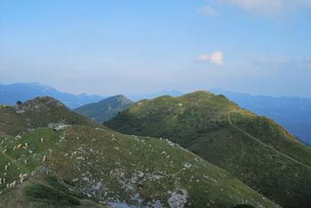 Pot na Slatnik nas vodi preko travnate planote katere najbolj vzhoden vrh je Dravh.