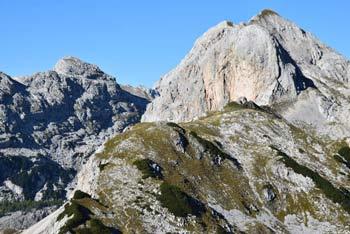 Velika Tičarica je brezpotna gora južno od Velike Zelnarice, nahaja pa se v Julijskih Alpah.