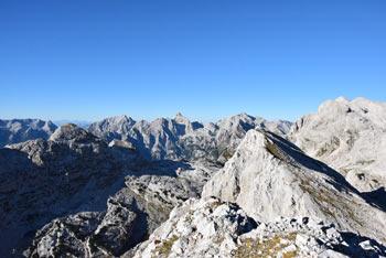 Velika Zelnarica je izvrsten razglednik, z nje se vidijo najvišji vrhovi Julijskih Alp, tudi Jalovec, Krn, Bogatin, pa tudi Triglav in Kanjavec.