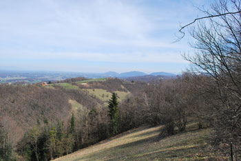 Vina gora se ponaša z energetsko točko, oziroma izvirom pozitivnih zemeljskih energij.