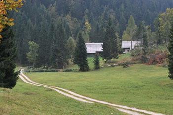 Družinski izlet na planino Zajamniki je primeren tudi za manjše otroke.