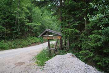 Do Železne vode, ki ima številne blagodejne učinke vodi kratek sprehod skozi smrekov gozd.