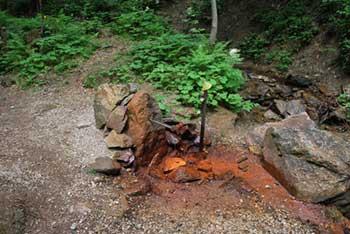 Železna voda je izvir na Solčavskem.