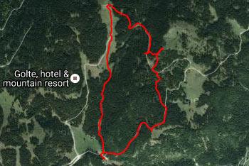 Na planoti Golte je orientacija lahka, saj so poti dobro označene, kar velja tudi za najvišji vrh Boskovec.