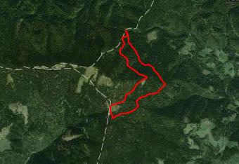 GPS track nas vodi skozi pretežno iglasti gozd do Doma na Smrekovcu.