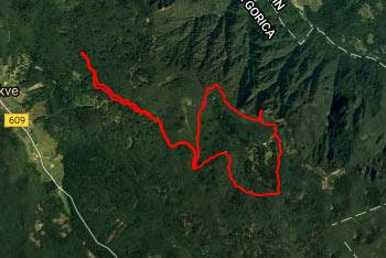 Pot na Poldanovec je orientacijsko povesem nezahtevna, le vršni del poti je nekoliko zaraščen.